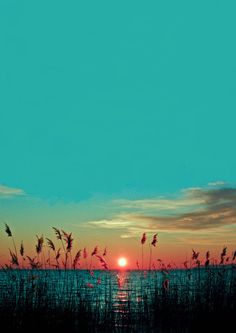 Summer sunset turquoise skies