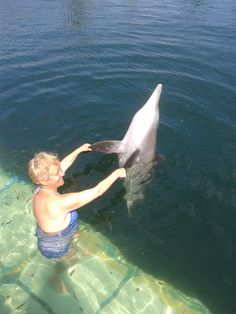In Sanur, there is an excellent company dealing with dolphins and rayas. Their attitude, the trainers, the arrangement are so friendly, not to speak about the dolphins themselves. For more info on how to participate in our program: http://www.fulfillinglifenews.com/healing-retreat-in-indonesia/