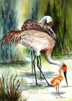 Sandhill Crane watercolor print ACEO A Family by watercolorsNmore, $4.00