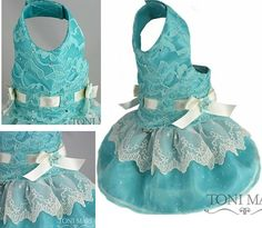 Sweet Chantilly Lace Aqua Dog Dress & Harness  with Detachable Skirt - $87.95