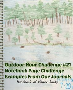 Handbook of Nature Study: Our Nature Notebooks: Examples from my boys over the years.