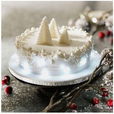 tried & tested christmas cakes 2014