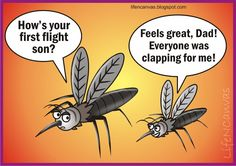 How was your first flight, son? #mosquitoes #funny