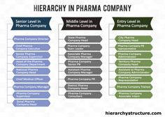 Hierarchy in Pharma company structure - System Company Structure, Organizational Chart, Pharma Companies, Business Intelligence, Team Leader, Job Description, Entry Level, Company Names, Management