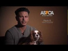 DJ Pauly D Teams up with ASPCA to Support Hurricane Sandy Relief Efforts!