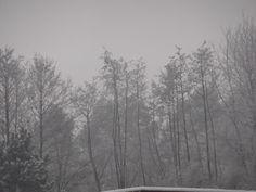 winter 2012....en het is bijna terug zo ver yeeee !