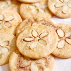 Sand Dollar Cookies......what could replace the almonds?....