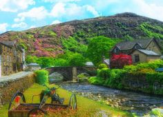 """Beddgelert, in North Wales. The Rhododendrons add a special beauty to the scenery but they are now considered a pest and efforts have been made to get rid of them. A few years ago """"Rhodi bashing days"""" were organized where teams of volunteers would attack them with a vengeance. I'm not sure what the present situation is, as of 2013. rjp"""