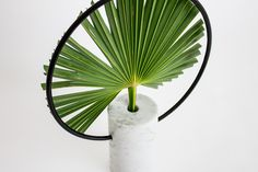 Petit / Vase by Davide G Aquini  #design #vase #flower