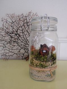 Landscapes in mason jars are all the rage. Start making your mini world in a jar to decorate your home.