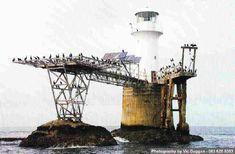 Roman Rock Lighthouse - False Bay, Simonstown