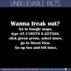 Funny facts creepy god 27 New ideas Creepy Facts, Wtf Fun Facts, Funny Facts, Cool Facts, True Facts, Useful Facts, Cool Random Facts, Creepy Meme, Creepy Quotes