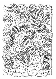 ☆ Colouring Page berries