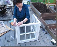 Little Window Greenhouse
