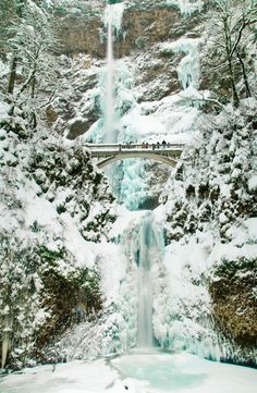 I have this pic in my home, only in summer time all green I would love this winter one!!! Multnomah Falls