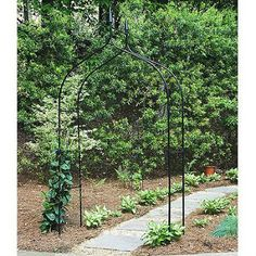 Gothic-Yard-Garden-Arch-Strong-100-Multi-Black-Poly-Coated-Steel-Tube-Allow-Ivy