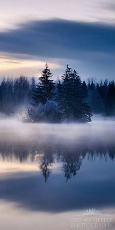 Fog settled over still lake water on a winter morning