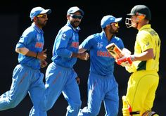 2015 Cricket World Cup: Australia v India.Aaron Finch and David Warner open the batting for the hosts, but Warner falls early with Australia on just 15.