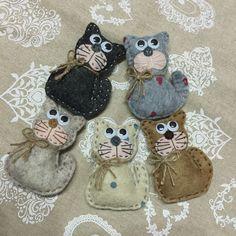 calamita gatti