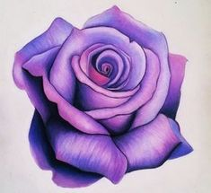 Roses drawings simple rose drawing house decor in 2019 drawings sharpie drawings art - Dessin d une rose ...