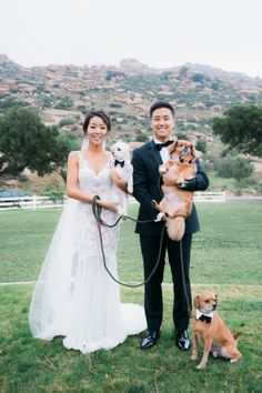 Bride & Groom Inspiration for Dogs + Weddings