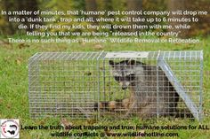 People need to know the truth about pest control companies. They are highly unregulated and no one checks to see that they are truly doing what they promise customers- like being 'humane'. Humane removal is a myth! Any animal trapped and 'relocated' has a very high chance of dying in the new spot they are released before they can establish their own territory, and it often leaves babies behind! Share and spread the word.