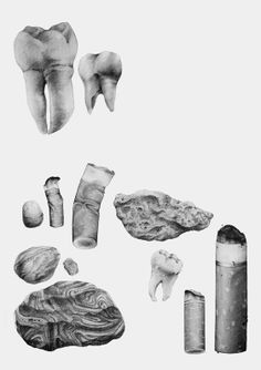 Drawings - Sara Andreasson #pencil #illustration #objects