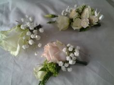 Pastel shade button holes and corsage