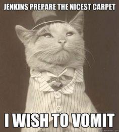 Wilbur vomited this evening so this is amusing and a bit poignant. Ahh pet parenting...