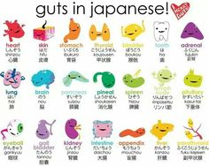 Japanese organs. So cute!