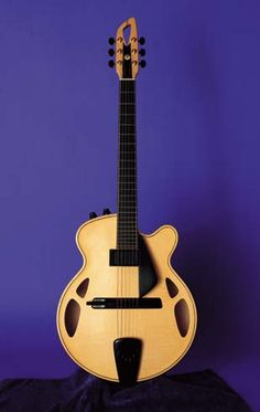 Josep Melo archtop. I have one like this, but without pickups. http://www.vintageandrare.com/category/Guitars-51