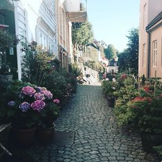 Bergen Norway's Second City and the Gateway to the Fjords. Photo by @razsadeq on Instagram.