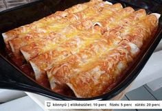 Steak enchilada Steak Enchiladas, Lasagna, Pork, Meat, Ethnic Recipes, Mexico, Cilantro, Kale Stir Fry, Pigs