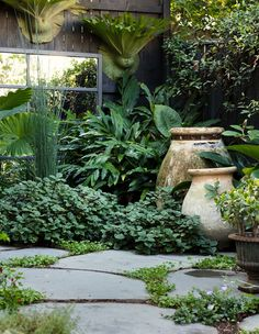 Gardening Bluestone steppers planted with native violet (Viola hederaceae) and kidney weed (Dichondra repens) provide a simple foil for abundant greenery. Image by Daniel Shipp - The lush inner city garden of leading Sydney florist, Sean Cook of Mr Cook. Back Gardens, Small Gardens, Outdoor Gardens, Courtyard Gardens, City Gardens, Courtyard Ideas, Small City Garden, Narrow Garden, Courtyard Design