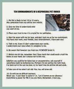 The 10 Commandments of a responsible pet owner.