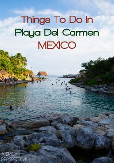 Things to Do in Playa Del Carmen, Mexico! Need tips on where to stay and what to do while in Playa Del Carmen, Mexico? A detailed list of things to do will Cozumel, Cancun Mexico, Mexico Vacation, Mexico Travel, Maui Vacation, Vacation Spots, Mexico Honeymoon, Belize Travel, Vacation Ideas