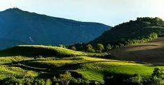 Monte Nerone, Marche, Italy.