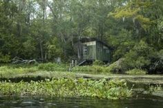 Florida..cabin on the river.