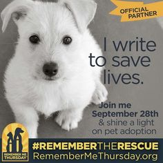 Remember Me Thursday: Life of a Last Chance Dog