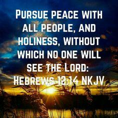 Hebrew 12 14
