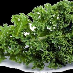 They say kale is the healthiest vegetable in the planet and there must be a reason why.Kale is great in digestion and detoxification. It's low calorie, high in fiber, high in nutrients and has zero fat. Kale is not good only in weight loss but for lots of other things too.
