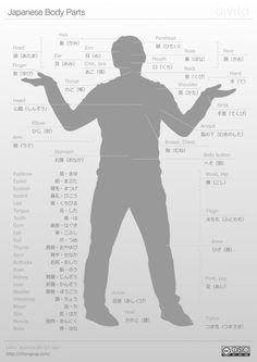 Japanese body parts cheat sheet