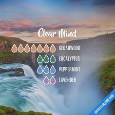 Clear Mind - Essential Oil Diffuser Blend