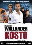 Wallander 14: Hämnden - DVD - Elokuvat - CDON.COM