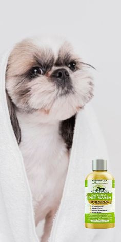 $15.99·Our Oatmeal Dog Shampoo And Conditioner is recommended by Vets and Specially formulated for pets with allergies to food, grass and flea bites. #dogoatmealshampoo #dogshampoo #dogconditioner #dogconditionerdiy #dogbathingshampoo #dogbathing Oatmeal Shampoo, Cat Shampoo, Shampoo And Conditioner, Dog Smells, Natural Vitamin E, Flea Treatment, Dog Eyes, Aloe Vera Gel, Allergies