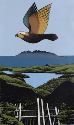 Kaiaraka Kaka, Great Barrier screenprint by Don Binney, NZ. (1982) Sold for 3000NZD.