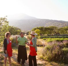 This week at the Ranch: Feb 14-21 Mountain Trek Culinary Experiences at La Cocina Que Canta | Visiting Chef Nancy Waldeck Valentine's Dinner in the Heart of Nature | Melissa Meyer and Maylin Chavez 20 Years of Reporting for The New York Times | Robin Pogrebin Indigo Dyeing a Shibori Scarf | Susan Kusama Mindful Sleep, Mindful Dreams | Rubin Naiman, Ph.D. Friendship and Illness | Letty Cottin Pogrebin Quest for Drugs to Treat Alzheimer's and Parkinson's Diseases | Stanley B. Prusiner, M.D.