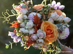 bukett oktober roser, dahlia, lønneblader, eucalyptus, erteblomstskudd