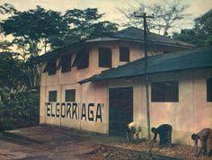 Estimulantes, colonialismo y cruce de itinerarios entre Guinea Ecuatorial y el País Vasco - Boletín de la AEA
