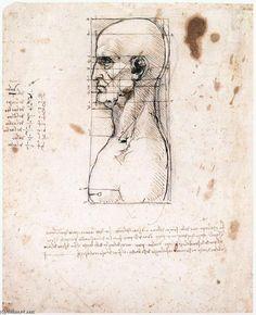 Leonardo Da Vinci-Male head in profile with proportions
